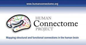 Human Connectome Project, l'organizazione di ricerca scientifica che sta elaborando il test prenatale sull'autismo