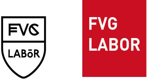Fvg Labor