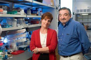 Jennifer Cochran e Amato Giaccia, i due ricercatori a capo del team che ha scoperto la nuova cura anti-cancro