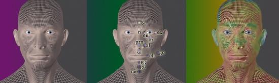 Un software di riconoscimento facciale individuando i marcatori rivelatori di stress o ansia