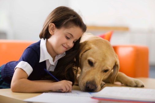 Per aiutare un bambino dislessico ad affrontare più serenamente la lettura di un libro può bastare un cane