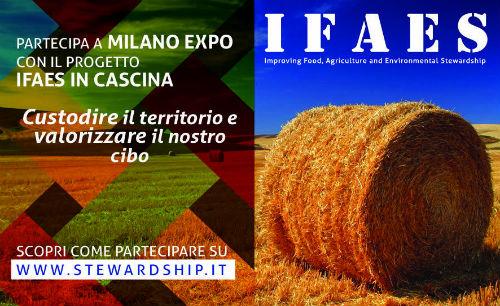 Il Progetto IFAES