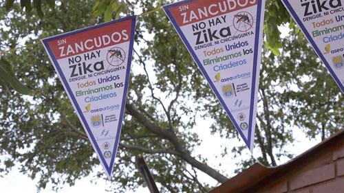 Anche Google collabora a debellare lo Zika Virus