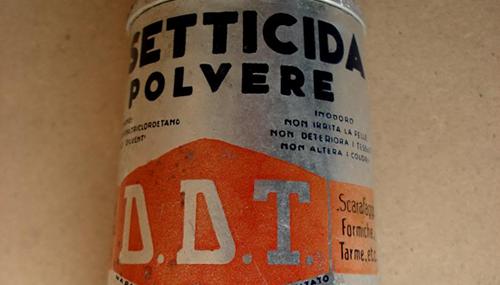 Nonostante sia ormai vietato da decenni l'insetticida DDT ancora è presente nell'ambiente e negli organismi umani ed animali