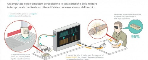 funzionamento dello studio sul tatto bionico